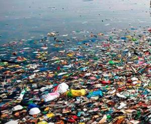 Botellas de agua de plástico. Un gran peligro para el planeta