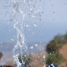 Agua del grifo o agua filtrada