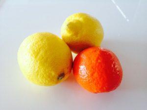 Nikken y la importacia de los citricos