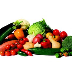 Nikken,la correcta nutrición, la mejor dieta, los mejores alimentos