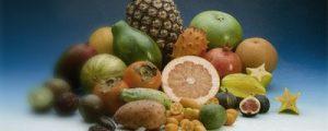 Dietas bajas en grasas o en carbohidratos